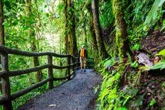 Hausse en Costa Rica Image libre de droits