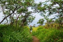 Hausse en Hawaï Photo stock