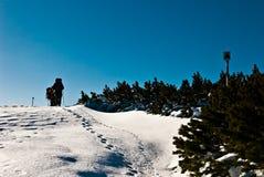 Hausse en hiver Photo libre de droits