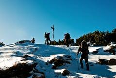 Hausse en hiver Photographie stock