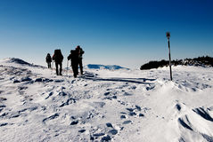 Hausse en hiver Image libre de droits