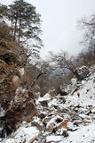 Hausse en montagne à distance de neige Image libre de droits