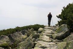 Hausse en montagne Photo libre de droits