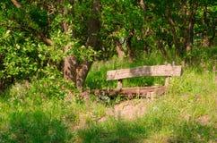 Hausse en nature pour voir le monde images stock