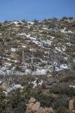 Hausse en parc de région sauvage de montagne de granit Photos stock