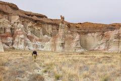 Hausse en Utah images stock