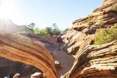 Hausse en Utah photographie stock libre de droits