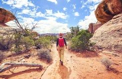 Hausse en Utah photo libre de droits