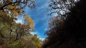 Hausse pinte 1 de traînée de canyon de Battle Creek clips vidéos