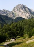 Hausses de famille dans les montagnes photos libres de droits