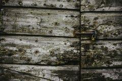 Haustür in Lucca Italien lizenzfreie stockfotografie
