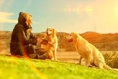 Haustiere und Hunde Ausbildung und Hunde erziehend Begleiter streichelt Konzept Stockfotos
