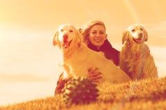 Haustiere und Hunde Ausbildung und Hunde erziehend Begleiter streichelt Konzept Lizenzfreies Stockbild