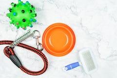 Haustierschüssel, -leinen und -spielzeug für Hund Haustierzubehörkonzept stockbilder