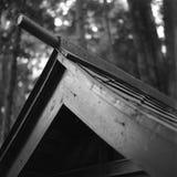 Haustierschrein-Dachspitze Lizenzfreies Stockbild