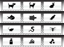 Haustierweb-Tasten - Schwarzweiss Lizenzfreie Stockbilder