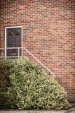 Haustür des Hauses des roten Backsteins Stockfotos