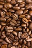 Haut étroit de graines de café d'arome Texture des grains de café Image stock