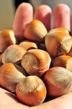 Haut étroit de noisettes Nuts Photos stock