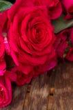 Haut étroit de roses roses foncées Photos stock