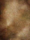 Haut stockbild