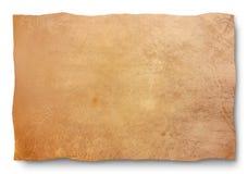 Haut - Ausschnittspfad stockbilder