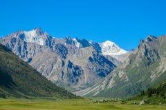 Haut glacier de montagne de neige et vallée verte en Tian Shan photographie stock libre de droits