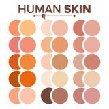 Haut-Menschen-Vektor Verschiedener Körper tont Diagramm Realistische Beschaffenheits-Palette Abbildung lizenzfreie abbildung