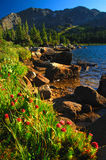 Haut pays du Colorado Photos libres de droits
