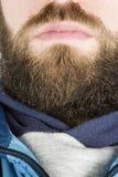 Haut proche de barbe Photos stock