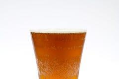 Haut proche de bière Photographie stock libre de droits