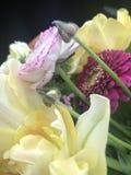 Haut proche de bouquet Image libre de droits