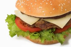Haut proche de cheeseburger Photographie stock libre de droits