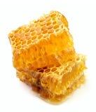 Haut proche de nid d'abeilles Images libres de droits