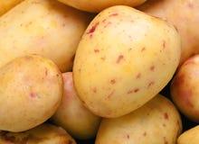 Haut proche de pomme de terre Photos libres de droits