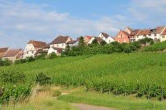 Haut Rhin,美丽如画的市Zellenberg在阿尔萨斯 库存照片