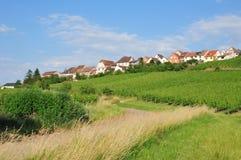 Haut Rhin, den pittoreska staden av Zellenberg i Alsace Arkivfoton