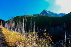 Haut tatry - chemin de Krivan Photo stock
