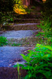 Haut étroit d'étapes de chemin de jardin Image libre de droits