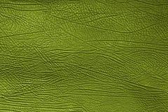 Hautbeschaffenheit stockbilder