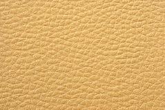 Hautbeschaffenheitshintergrund Lizenzfreie Stockbilder