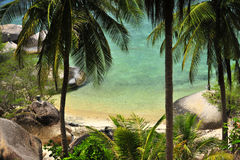 Haute île de point de vue avec l'arbre de noix de coco images stock