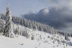Haute backcountry stupéfiante de paysage d'hiver dans les montagnes photo libre de droits