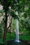 Haute cascade à écriture ligne par ligne tropicale Images stock