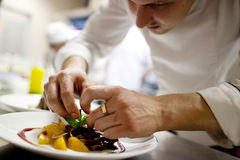 Haute cuisine Stock Photos