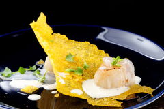 Haute cuisine, Gourmet food scallops on a corn Stock Images