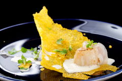 Haute cuisine, Gourmet food scallops on a corn Stock Photography