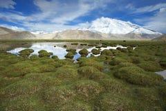 Haute montagne dans la neige Image stock