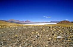 Haute vers le haut dans les Andes argentins Photographie stock