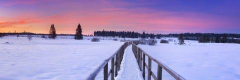 Hautes的Fagnes,比利时木板走道在日出的冬天 库存图片